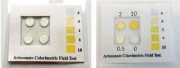 Imagen: El kit para prueba en campo, Artesunate (Fotografía cortesía de la Universidad del Estado de Oregón).