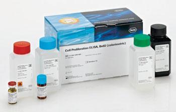 Imagen: El kit para análisis ELISA, BrdU, para proliferación celular (Fotografía cortesía de Roche Diagnostics).