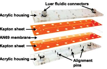 Imagen: El dispositivo de microfluidos con membranas, para la desglicerolización de los glóbulos rojos (Fotografía cortesía de la Universidad Estatal de Oregón).