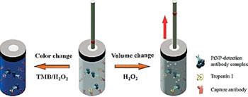 Imagen: Una ilustración de la detección de la troponina I utilizando viales de vidrio y tubos capilares con un indicador de tinta (Fotografía cortesía de la Sociedad Americana de Química).