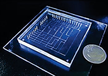Imagen A: El dispositivo lab-en-un-chip para el diagnóstico de la criptosporidiosis (Fotografía cortesía del profesor Xunjia Cheng).