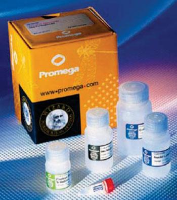 Imagen: El kit Wizard para la purificación de ADN genómico (Fotografía cortesía de Promega).