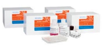 Imagen: El GastroPanel comprende cuatro kits ELISA para biomarcadores (Fotografía cortesía de Biohit).