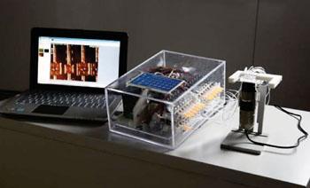 Imagen: La plataforma de microfluidos digital-análoga para el diagnóstico de biomarcadores multiplexados, centrados en el paciente, de muestras con volumen ultrabajos (Fotografía cortesía de Alban Kakulya).